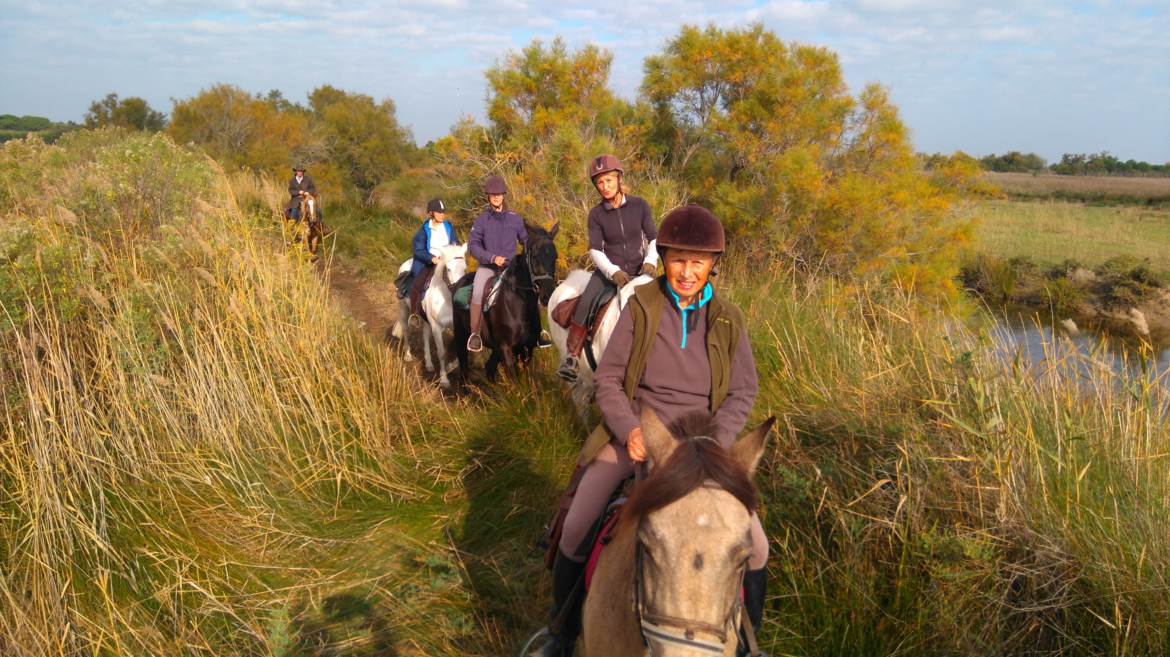 Stages Equitation Adultes Domaine Equestre Du Moulin